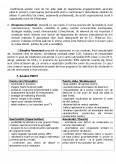 Plan de Afaceri SC Milenium SA