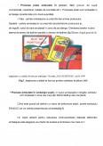 Imagine document Codificarea Bunurilor