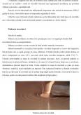 Tehnologia fabricarii ciocolatei