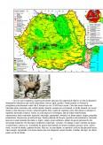 Imagine document Protejarea faunei in Romania