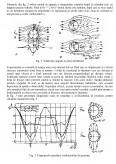 Imagine document Repartitia de presiuni si rezistenta la inaintare pe cilindrul plasat intr-un curent de aer