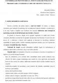 Imagine document Consideratii privind rolul institutiilor publice in promovarea turismului din municipiul Suceava