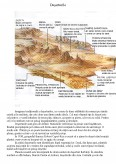 Deserturile