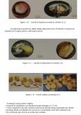 Imagine document Sistemul de Transport Pentru O Linie Tehnologica de Prelucrare a Cartofilor