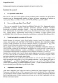 Imagine document Insusirea Principiilor de Lucru in Adobe Flex
