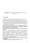 Imagine document Contabilitatea Imobilizarilor Corporale
