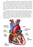 Imagine document Ingrijirea Pacientilor cu Infarct Miocardic Acut