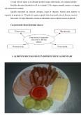 Recomandarea Preparatelor Dietetice pentru Diferite Regimuri Speciale
