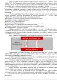 Imagine document Implementarea proiectarii sistemelor informatice in cadrul unei firme