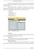 Utilizarea unei aplicatii in scopul invatarii asistate de calculator