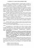 Studiu de caz privind comercializarea marfurilor