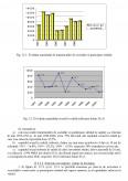 Studiu privind strategiile investitionale practicate in economia de tranzitie