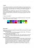 Imagine document Studiu privind realizarea unui site