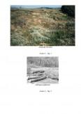 Imagine document Degradarea solului