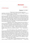 Micul Print - Antonie De Saint Exupery