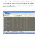 Modul De Functionare Al Sistemului Informatic Credit