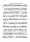 Tipologii Explicative Cauzale Tipuri De Tipologii