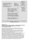 Enzime Pectinolitice de Origine Microbiana