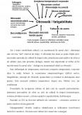 Proiect Geriatrie - Afectiunile Degenerative ale Sistemului Nervos