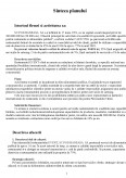 Plan de Afaceri pentru Finantare - SC Pod Baneasa SA