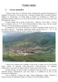 Obiectivele Turistice ale Zonei Turnu Rosu din Judetul Sibiu