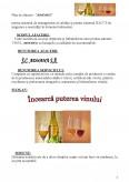 Plan de Afacere - Fabricarea si Imbutelerea Vinului
