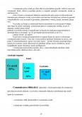 Comunicare. Forme ale Comunicarii Umane