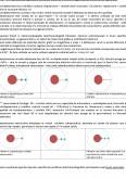 LP Electrocardiografie