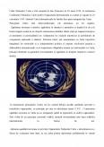 Rolul ONU si NATO in Gestionarea Crizelor