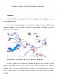 Imagine document Fenomene Hidrice de Risc in Localitatea Moldoveni