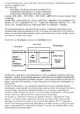 Tehnologii Informatice - Aspecte Fundamentale