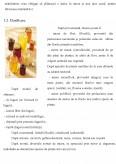 Pericolele Chimice din Mierea de Albine - Streptomicina, Eritromicina si Sulfamidele