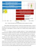 Imagine document Studii de caz pentru punerea in aplicare a Diretivei UE 35 privind campurile electromagnetice