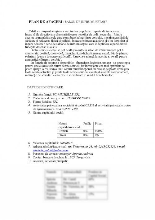 Referat Plan De Afaceri Salon De Infrumusetare 430959 Graduo